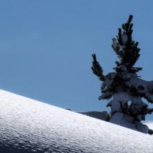 Neve - Image #023 - 2011
