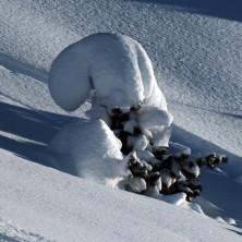 Neve - Image #024 - 2011
