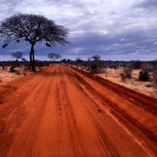 """Tsavo Est"" - Kenya - 2006"