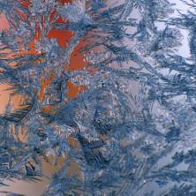 """""""Tribal Ice #01"""" - 2011"""